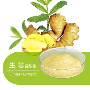 Ginger Extract Price-Undersun