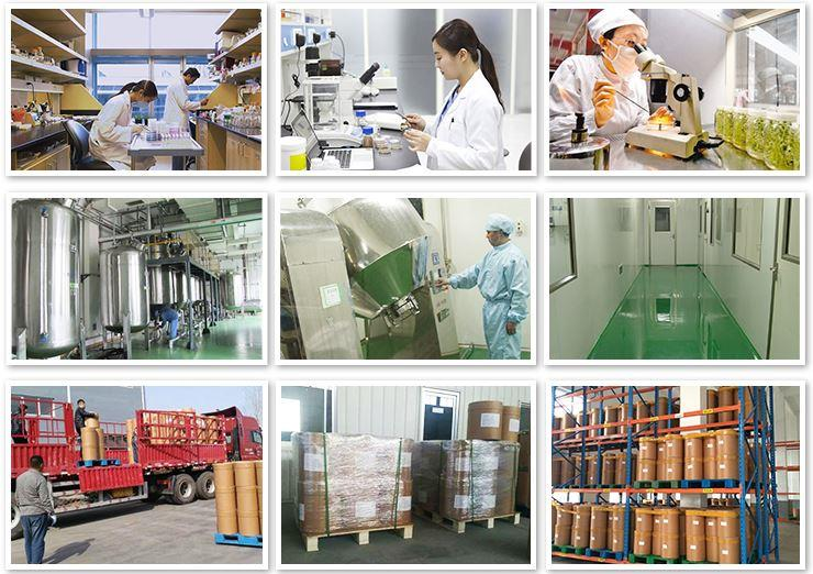 Mct Powder Manufacturer & Supplier & Price & Wholesale & USA Warehouse