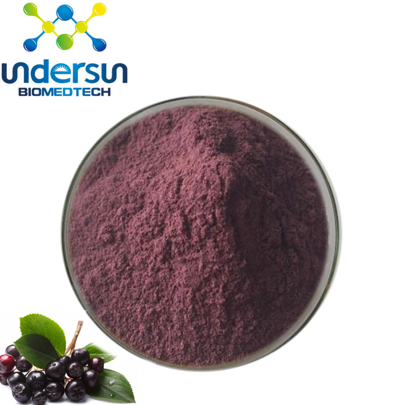High quality Anthocyanidins 25% Elderberry Extract
