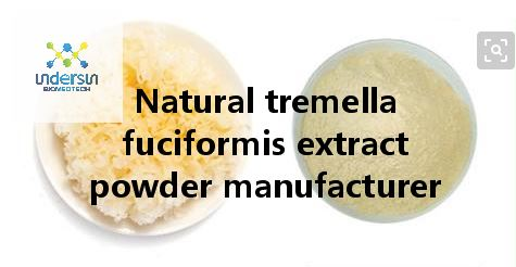Natural tremella fuciformis extract powder manufacturer