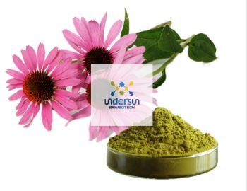 Factory Price Natural Echinacea Purpurea Extract Polyphenols