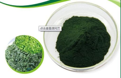 Spirulina Powder-1