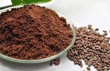 Grape Seed Extract-1