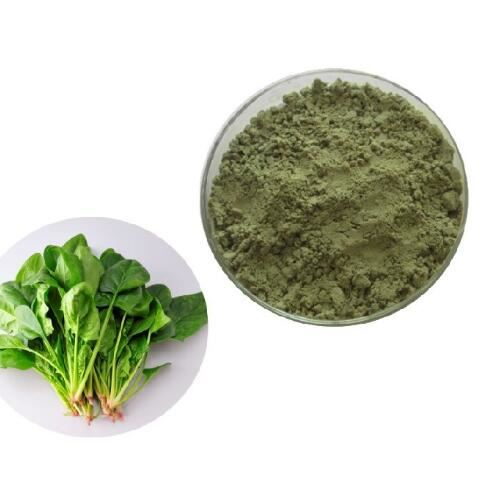 Spinach Extract-1