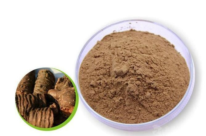 Rhodiola Root Extract-1