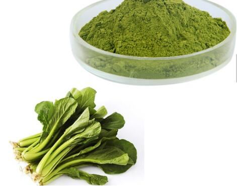 Spinach Extract-2