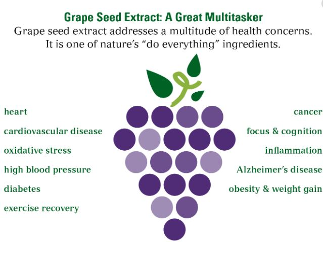 Grape Seed Powder Benefits