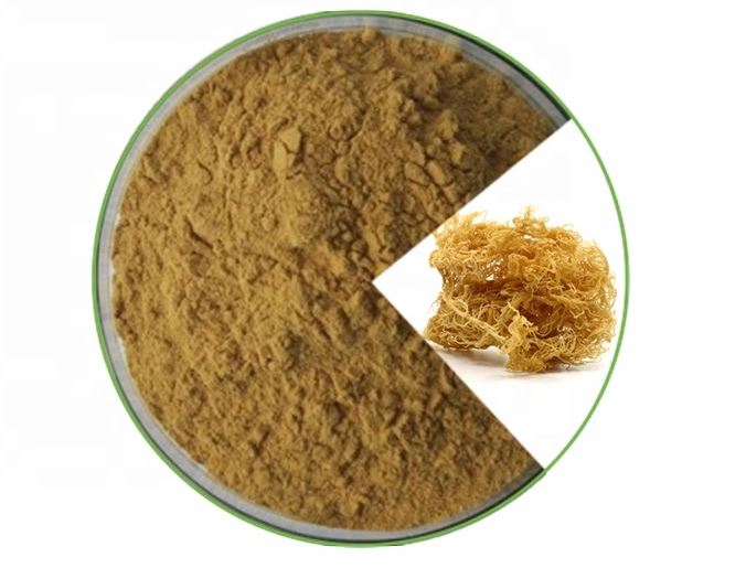 Irish Sea Moss Powder-1