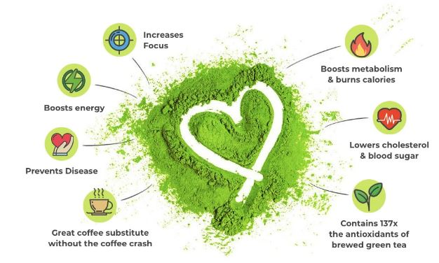Bulk Matcha Powder Benefits