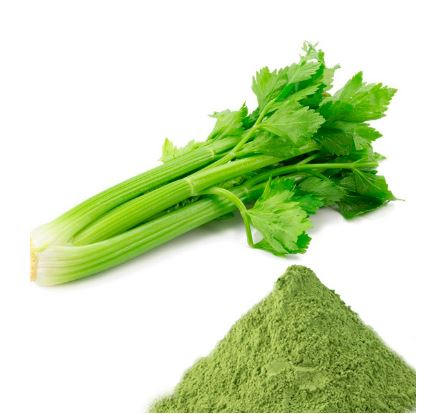 Celery Juice Powder-1