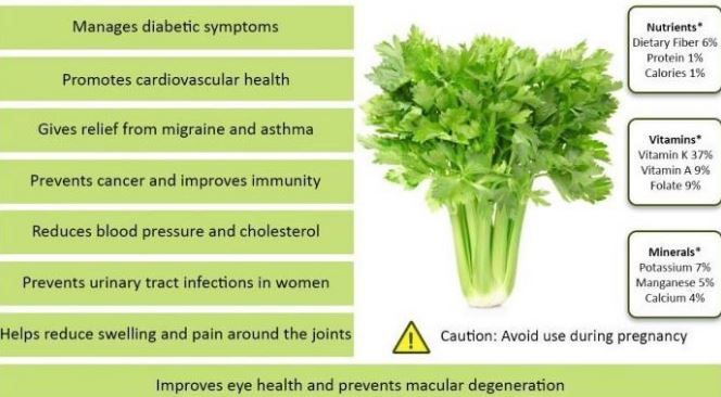 Organic Celery Juice Powder Benefits