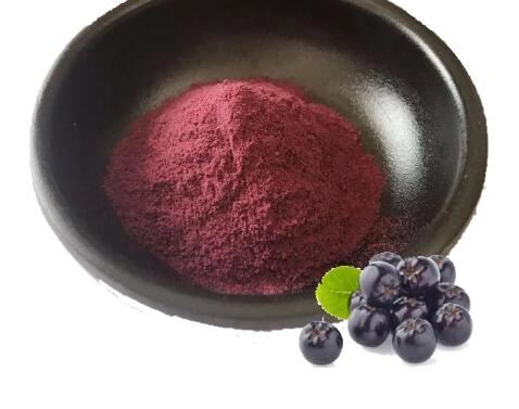 sambucol elderberry extract