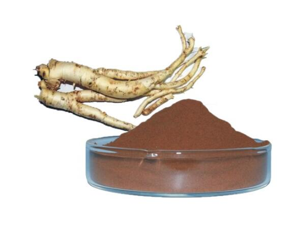 bellflower root extract