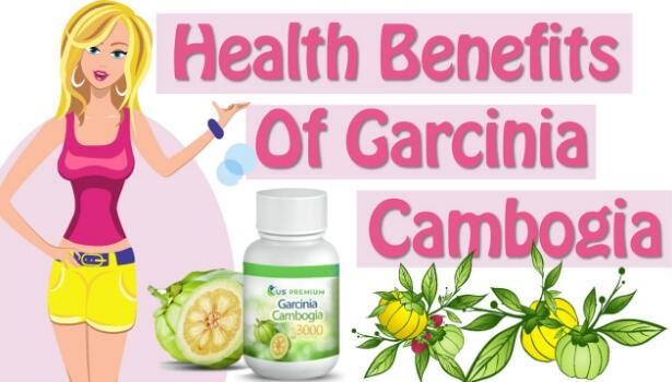 Garcinia Cambogia Powder benefits