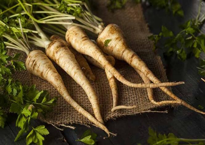 parsley root benefits