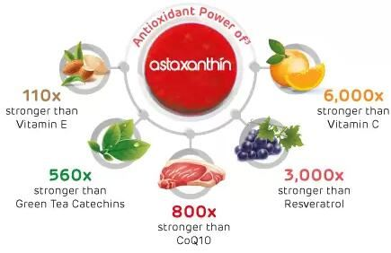 astaxanthin sources in plants