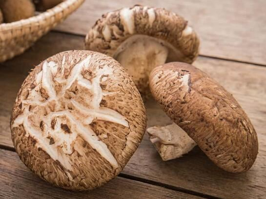 Shiitake Powder Benefits