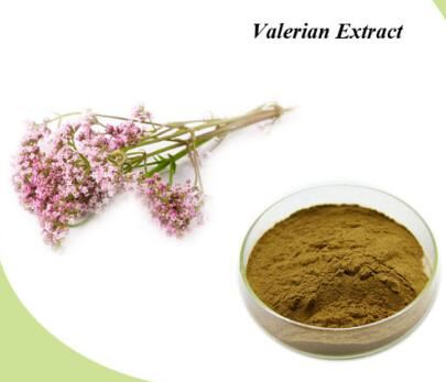 valerian application