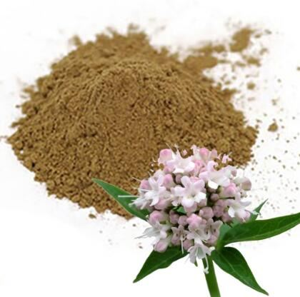 best valerian root extract
