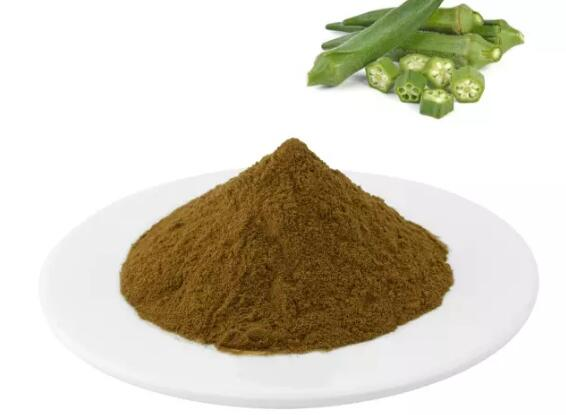 Okra Powder Benefits-1