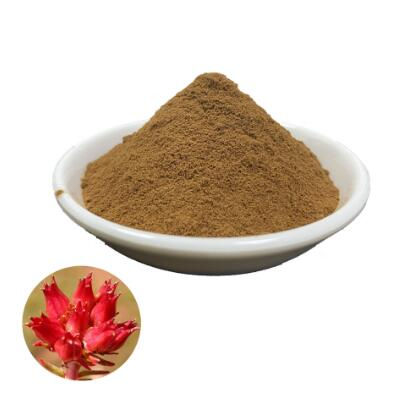 rhodiola rosea standardized extract