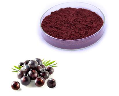 pure organic acai powder