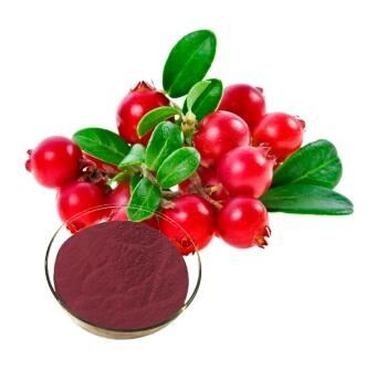 cranberry fruit extract