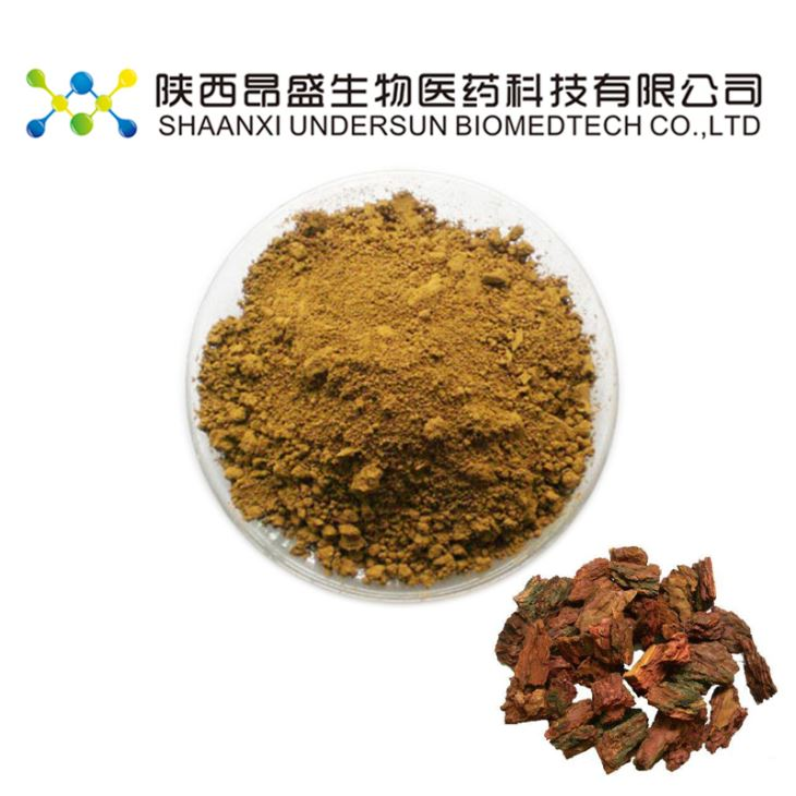 Pine Seed Extract Powder