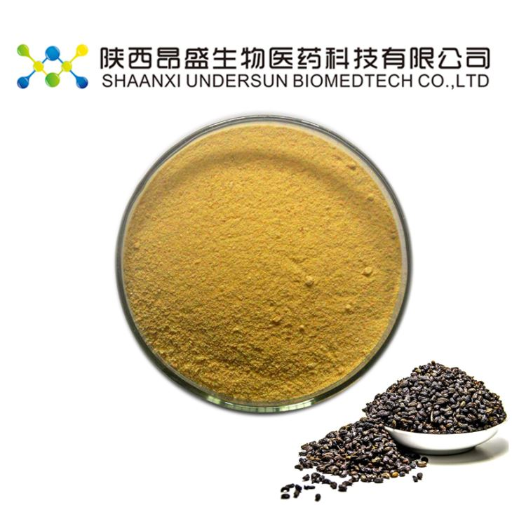 Privet Fruit Extract Powder