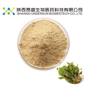 Heartleaf Houttuynia Herb Extract