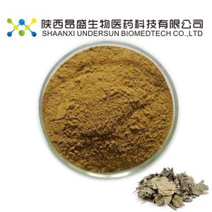 Mullberry Leaf Extract Powder