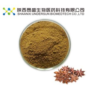 Star Anise Fruit Powder