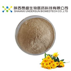 Wild Chrysanthemum Extract