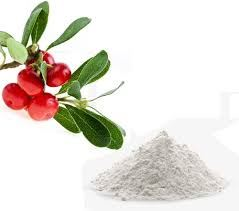 Arbutin Powder