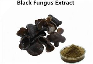​Black Fungus Extract
