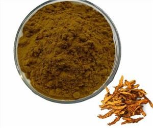 Coptis Chinensis Root Extract