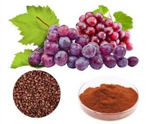 Grape Seed Powder