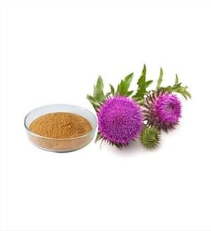 Milk Thistle Powder Bulk