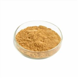 Oleander Leaf Extract