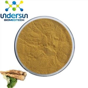 Burdock Powder