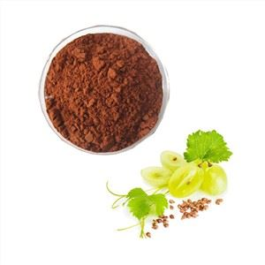 Organic Grape Seed Extract Powder