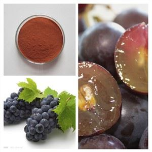 Organic Grape Seed Powder