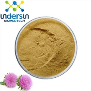 Silymarin Powder