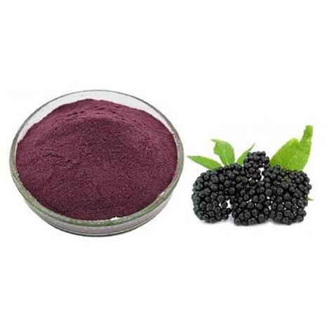 Best Elderberry Extract