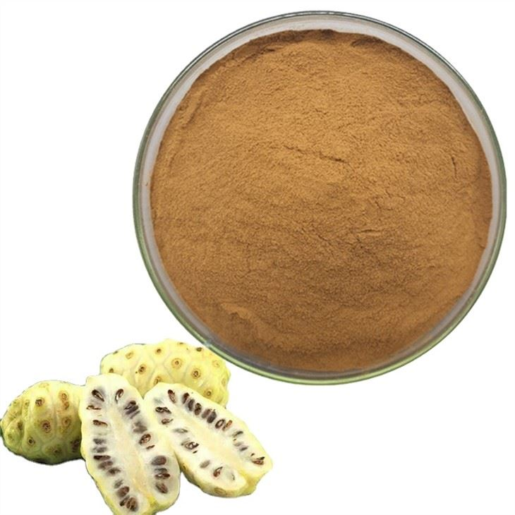 Noni Juice Powder