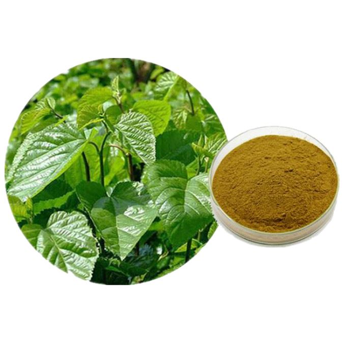 Organic Mulberry Leaf Extract