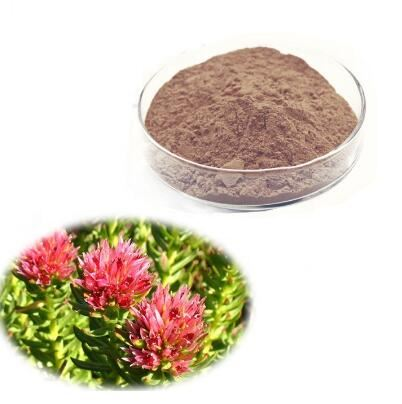 Rhodiola Rosea Root Extract