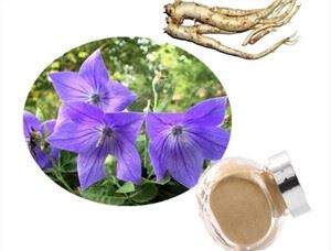 Balloon Flower Root Extract Powder
