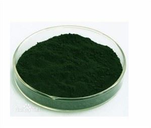 Best Chlorella Powder