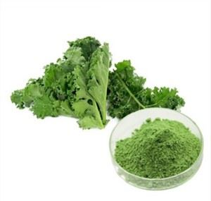 Bulk Kale Powder